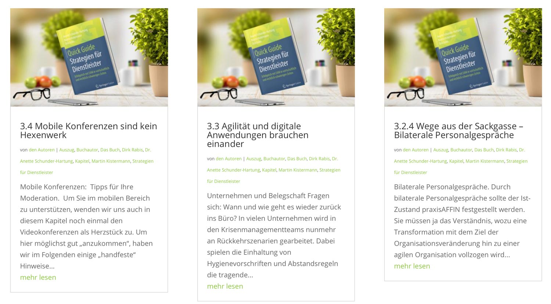Buchkapitel Auszug. Strategien für Dienstleister von Buchautor Dirk Rabis